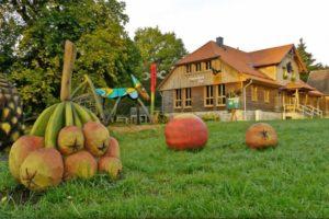 Studie zur Barrierefreiheit im Nationalpark Harz - Studentin sucht Tester