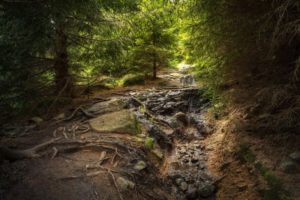 Neue Broschüre zu Deutschlands UNESCO-Geoparks