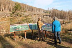 Themeninsel: Waldwandel am Brocken erleben und verstehen