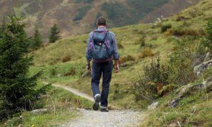 Mit der Harzer Wandernadel den Nationalpark Harz entdecken