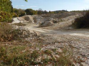 Schutz des Gipskarstgebietes im Südharz – keine Abbaugenehmigungen