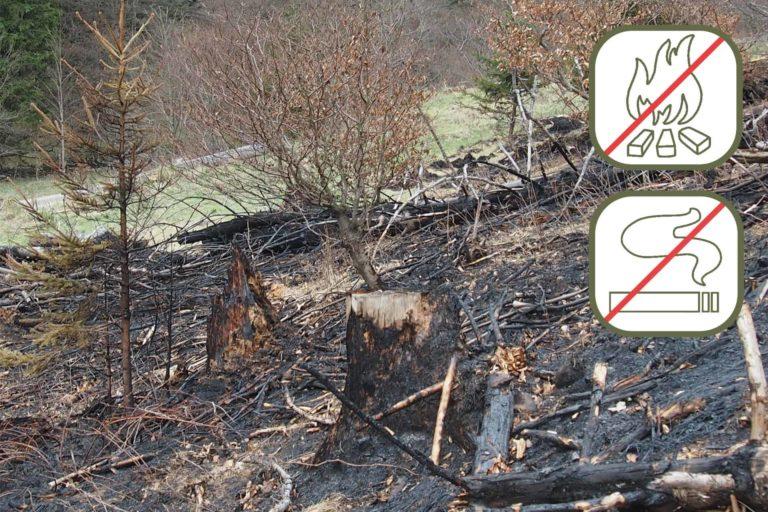 Achtung Waldbrandgefahr im ganzen Land und auch im Harz