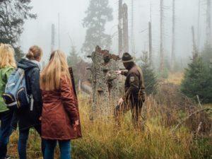 Ranger-Wildnisführung auch im Nationalpark Harz