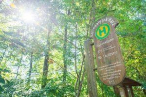 Nationalparkregion Harz mit Fahrtziel Natur-Award 2020 ausgezeichnet
