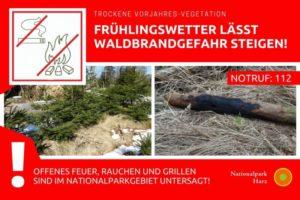 Waldbrandgefahr steigt auch im Harz - Regeln beachten!