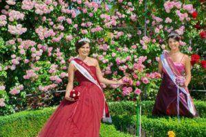 Krönung der Rosenmajestäten im Europa-Rosarium Sangerhausen