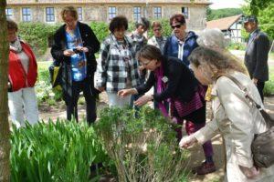 Kloster Michaelstein: Endlich wieder Schauen, Riechen und Schmecken